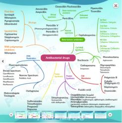 Pharmaco1
