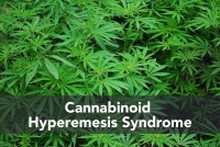 Cannabis-plant-200x134