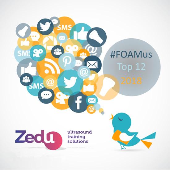 Top-12-foamus-2018.jpg
